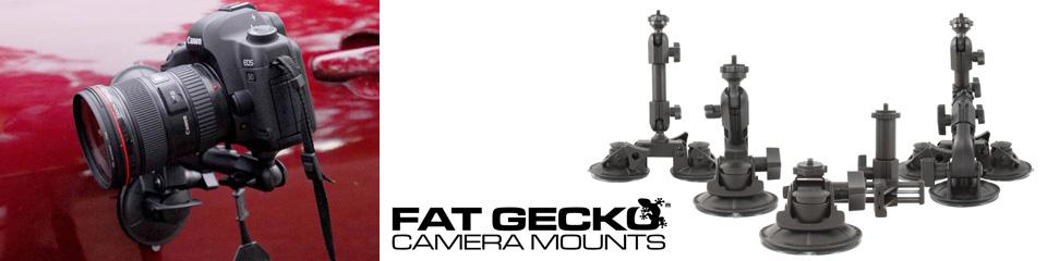 <h1>FatGeckoプロフェッショナルレビュー オーストラリア編</h1>